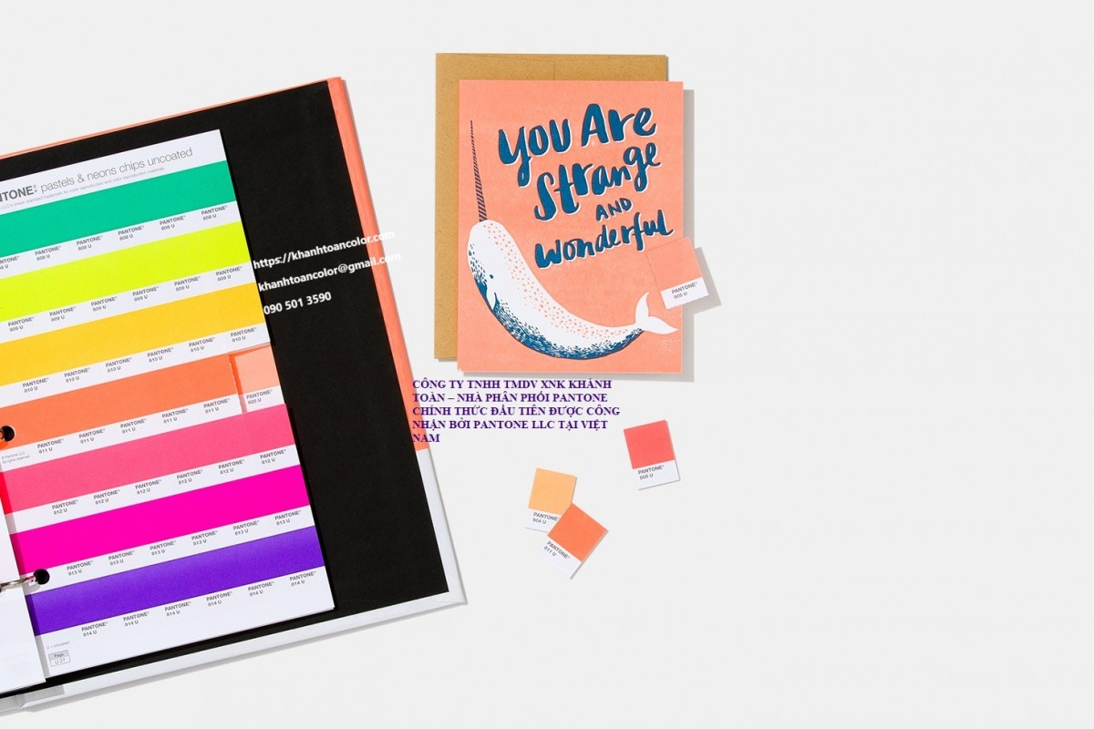 Bang mau pantone GB1504A-pantone-pms-spot-colors-chip-book-pastels-and-neons-coated-and-uncoated-lifestyle