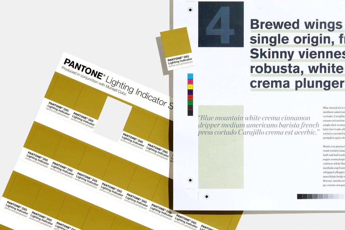 bang mau pantone - Pantone Lighting Indicator Stickers D65 (2)